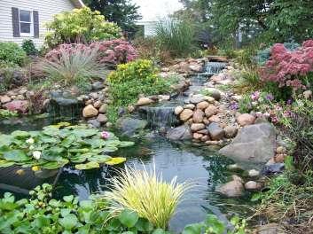 My Garden Tour 070